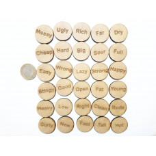 Wodo İngilizce Kelime Oyunu Pulu - Adjectives
